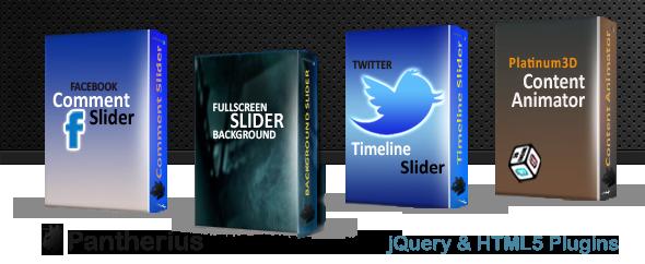Twitter Timeline Slider for WordPress 9