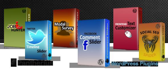 Twitter Timeline Slider for WordPress 10